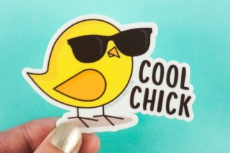 cool chick