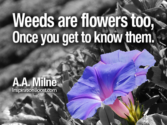 weed quote 2